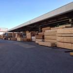 東京中央木材市場とケヤキの巨木