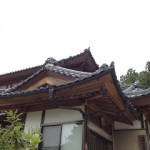 城屋根住宅の魅力について